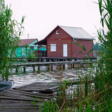Egy különös világ, a Bokodi tó
