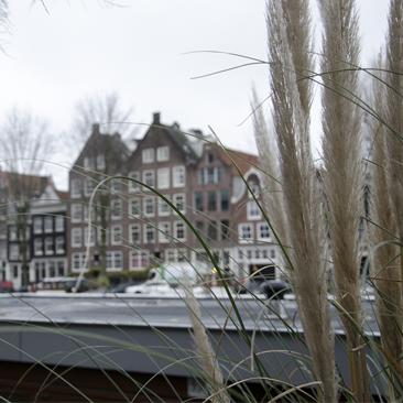 Városnézés két gyerekkel Belgiumtól Hollandiáig